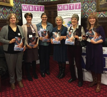 WBTI steering group